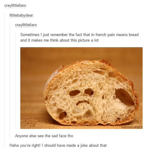 Facts, Funny, and Jokes: craylittleliars  littlebabydear.  tleliars  Sometimes I just remember the fact that in french pain means bread  and it makes me think about this picture a lot  Anyone else see the sad face tho  Haha you're right  I should have made a joke about that