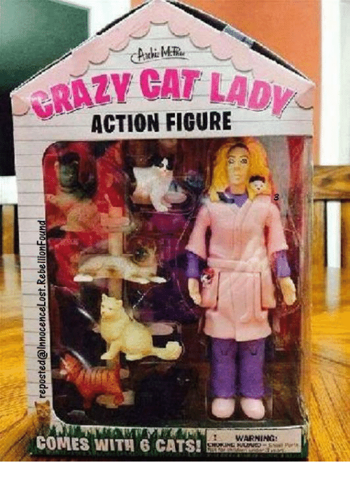 Cats, Crazy, and Dank: CRAZY CAT LAD ACTION FIGURE AZ WARNING: COMES WITH 6 CATS!