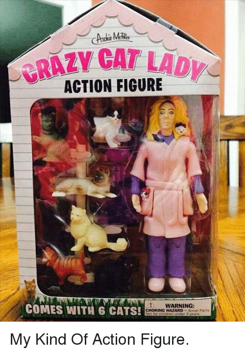 Cats, Crazy, and Cat: CRAZY CAT LAD  ACTION FIGURE  COMES WITH 6 CATS!  WARNING:  CHOKING HAZARD Smal Ports <p>My Kind Of Action Figure.</p>