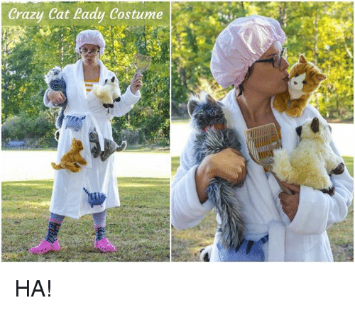 25+ Best Crazy Cat Lady Costume Memes | Crazy Cats Memes Craziness Memes Costumer Memes  sc 1 st  Me.me : crazy cat costume  - Germanpascual.Com