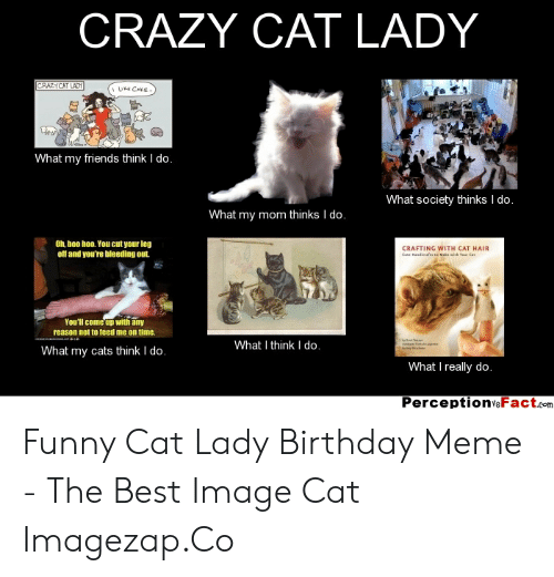 Excellent Crazy Cat Lady Crazycat Ladt Ale Cake What My Friends Think I Do Funny Birthday Cards Online Elaedamsfinfo