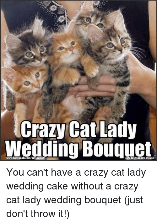 crazy cat lady wedding bouquet www facebook com cat addicts catoddictsanony mouse you cant have 6336169 ✅ 25 best memes about crazy cat lady crazy cat lady memes