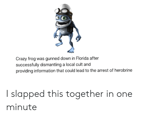 Crazy, Florida, and Information: Crazy frog  successfully dismantling a local cult and  providing information that could lead to the arrest of herobrine  was gunned down in Florida after I slapped this together in one minute