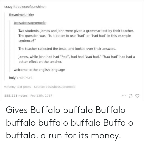 "Funny, Money, and Run: crazylittlepieceofsunshine:  theanimejunkie:  bossubossupromode:  Two students, James and John were given a grammar test by their teacher  The question was, ""is it better to use ""had"" or ""had had"" in this example  sentence?""  The teacher collected the tests, and looked over their answers.  James, while John had had ""had"", had had ""had had."" ""Had had"" had had a  better effect on the teacher.  welcome to the english language  holy brain hurt  funny-text-posts  source: bossubossupromode  555,221 notes Feb 13th, 2017 Gives Buffalo buffalo Buffalo buffalo buffalo buffalo Buffalo buffalo. a run for its money."