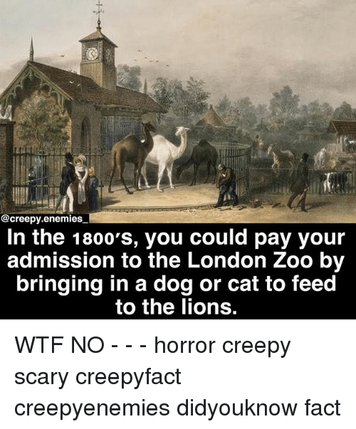 Creepy, Memes, and Wtf: @creepy.enemies  In the 1800's, you could pay your  admission to the London Zoo by  bringing in a dog or cat to feed  to the lions. WTF NO - - - horror creepy scary creepyfact creepyenemies didyouknow fact