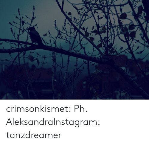 Instagram, Tumblr, and Blog: crimsonkismet:  Ph. AleksandraInstagram: tanzdreamer