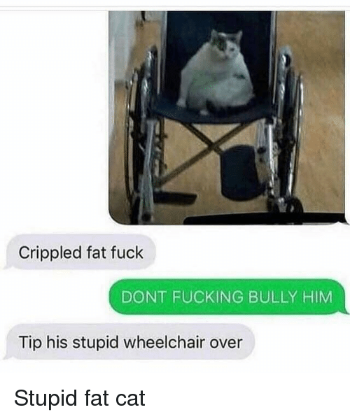 Agree dont fuck with this cat