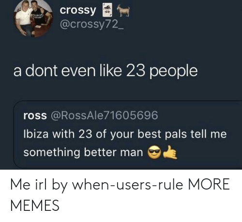 Dank, Memes, and Target: crossy  @crossy72_  a dont even like 23 people  ross @RossAle71605696  Ibiza with 23 of your best pals tell me  something better man Me irl by when-users-rule MORE MEMES