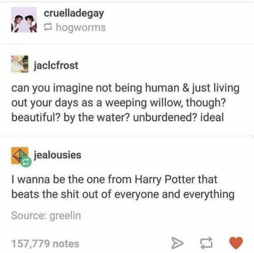 Beautiful, Harry Potter, and Shit: cruelladegay  hogworms  jaclcfrost  can you imagine not being human & just living  out your days as a weeping willow, though?  beautiful? by the water? unburdened? ideal  jealousies  I wanna be the one from Harry Potter that  beats the shit out of everyone and everything  Source: greelin  157,779 notes