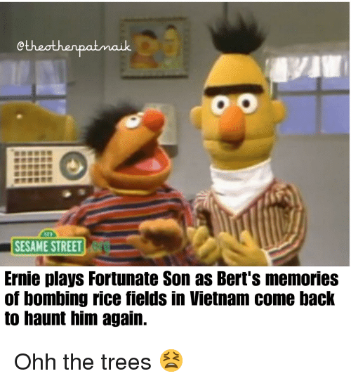 Sesame Street, History, and Trees: Ctheothenpatmaik  SESAME STREET  Ernie plays Fortunate Son as Bert's memories  of bombing rice fields in Vietnam come back  to haunt him again.