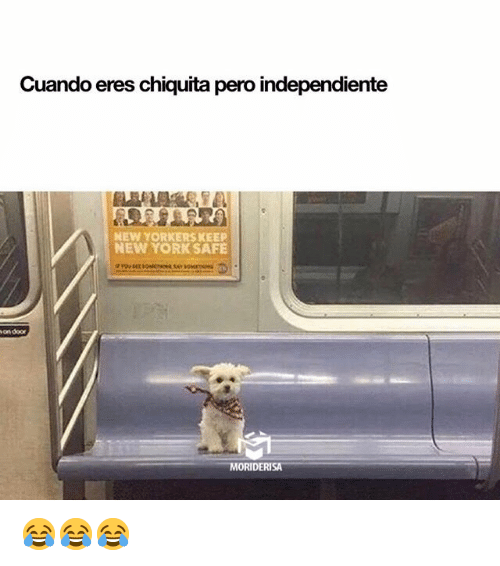 Memes, New York, and 🤖: Cuando eres chiquita pero independiente  NEW YORKERS KEEP  NEW YORK SAFE  on door  MORIDERISA 😂😂😂
