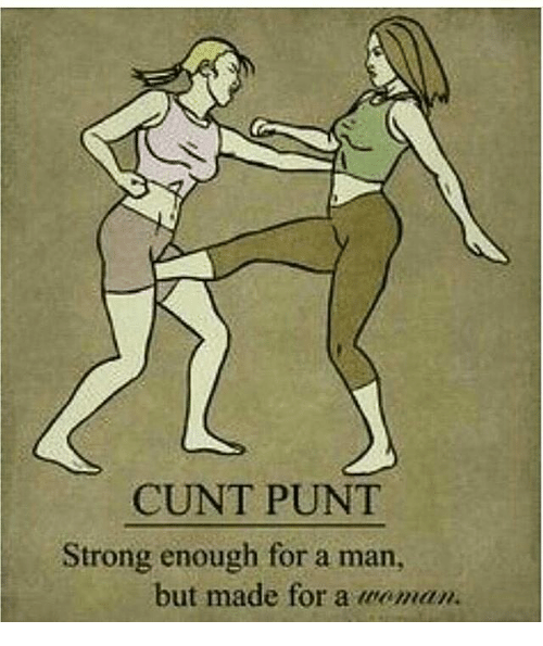 Cunt Punt Strong Enough For A Man But Made For A Woman Meme On Meme