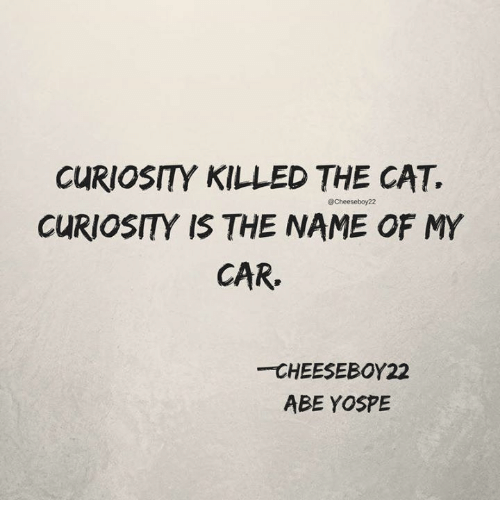 Memes, 🤖, and Cat: CURIOSITY KILLED THE CAT.  CURIOSITY IS THE NAME OF MY  CAR  @Cheeseboy22  CHEESEBOY22  ABE YOSPE