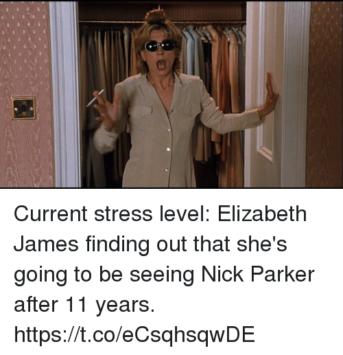 Nick, Girl Memes, and Stress: Current stress level: Elizabeth James finding out that she's going to be seeing Nick Parker after 11 years. https://t.co/eCsqhsqwDE