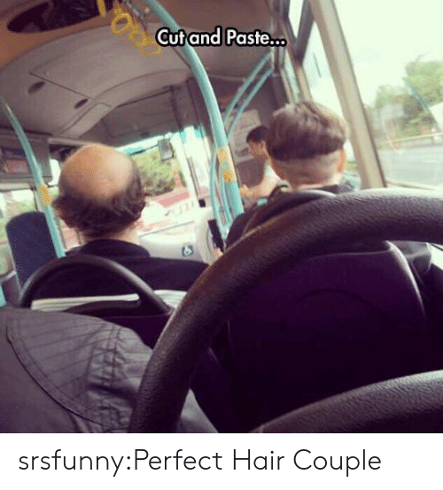 Tumblr, Blog, and Hair: Cutand Paste. srsfunny:Perfect Hair Couple