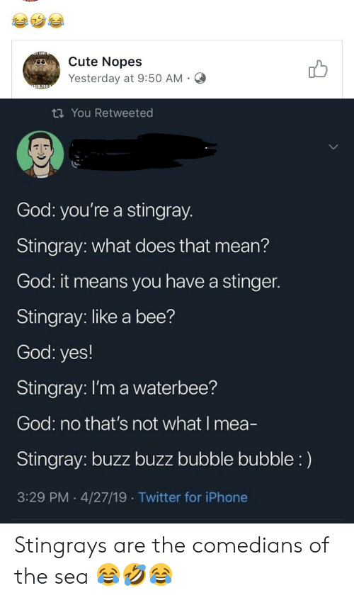 Cute, God, and Iphone: Cute Nopes  db  Yesterday at 9:50 AM.O  ti You Retweeted  God: you're a stingray.  Stingray: what does that mean?  God it means you have a stinger.  Stingray: like a bee?  God: yes!  Stingray: I'm a waterbee?  God: no that's not what I mea-  Stingray: buzz buzz bubble bubble:)  3:29 PM 4/27/19 Twitter for iPhone Stingrays are the comedians of the sea 😂🤣😂