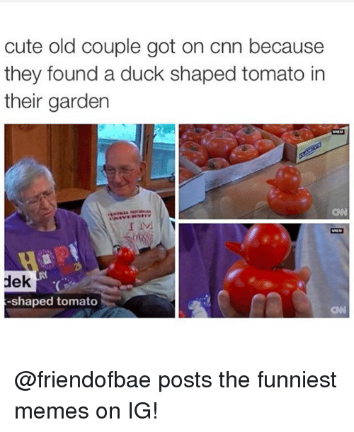 cnn.com, Cute, and Funny: cute old couple got on cnn because  they found a duck shaped tomato in  their garden  CN  dek  -shaped tomato @friendofbae posts the funniest memes on IG!