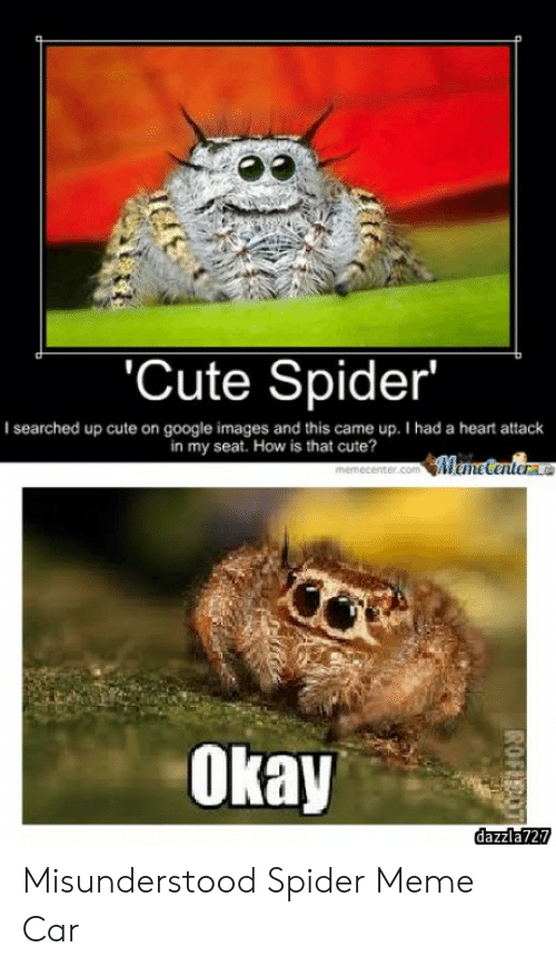 Cute Spider I Searched Up Cute On Google Images And This Came Up