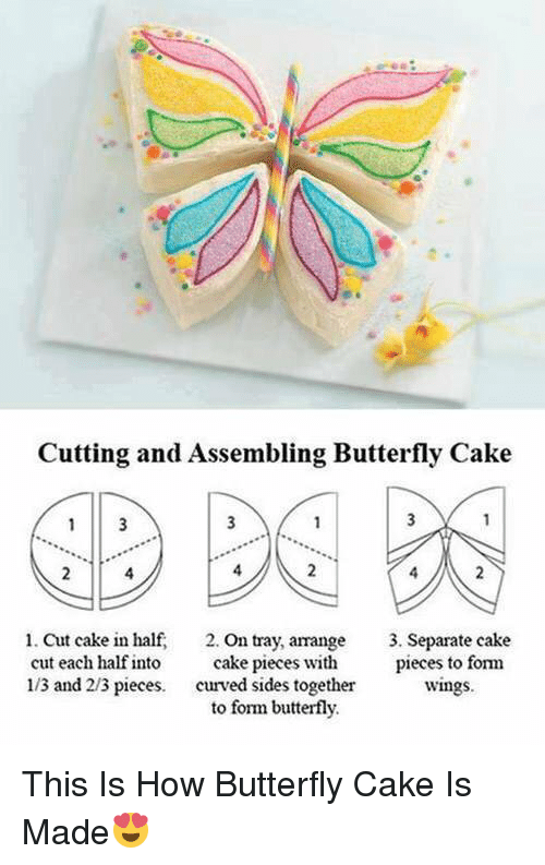 Memes, Butterfly, and 🤖: Cutting and Assembling Butterfly Cake  3  1. Cut cake in half.  on tray, arrange  3. Separate cake  cake pieces with  pieces to  form  cut each half into  113 and 213 pieces  curved sides together  Wings.  to form butterfly. This Is How Butterfly Cake Is Made😍