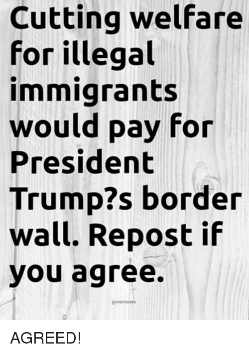 Memes, Trump, and 🤖: Cutting welfare  for illegal  immigrants  would pay for  President  Trump?s border  wall. Repost if  you agree. AGREED!