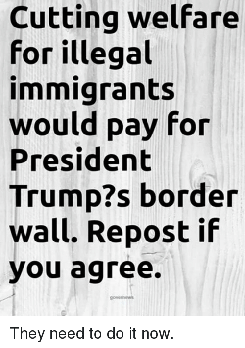 Memes, Trump, and 🤖: Cutting welfare  for illegal  immigrants  would pay for  President  Trump?s border  wall. Repost if  you agree. They need to do it now.