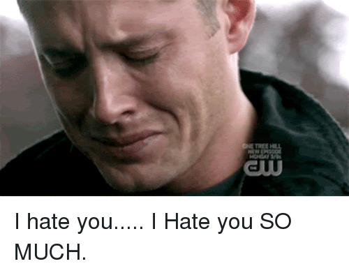 25 best memes about hate you so much hate you so much memes