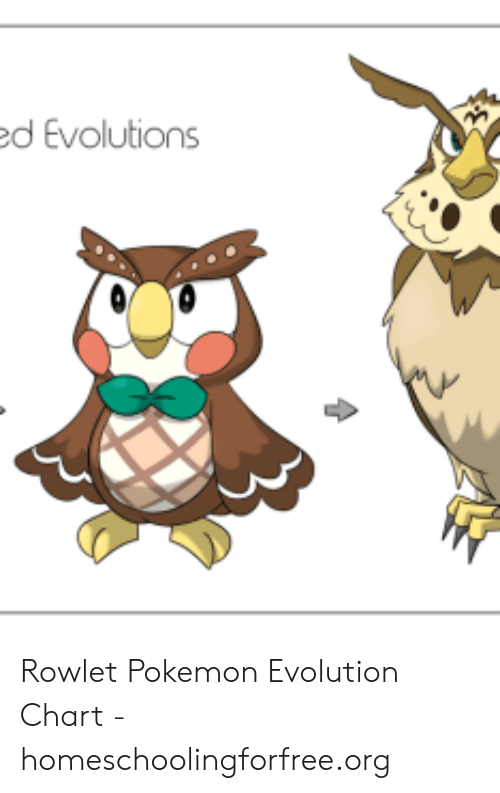 D Evolutions Rowlet Pokemon Evolution Chart