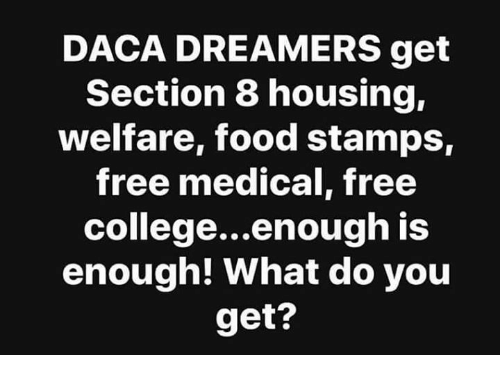 DACA DREAMERS Get Section 8 Housing Welfare Food Stamps ...