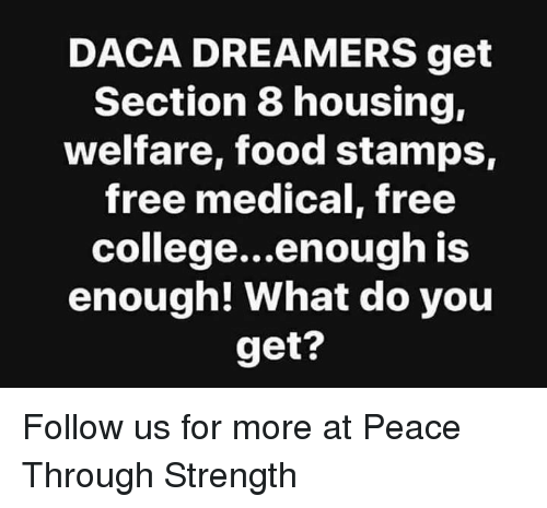 DACA DREAMERS Get Section 8 Housing Welfare Food Stamps