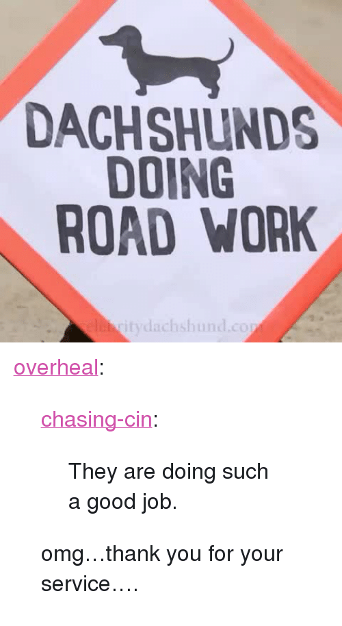 "Omg, Target, and Tumblr: DACHSHUNDS  DOING  ROAD WORK  itydachshund.cop <p><a class=""tumblr_blog"" href=""http://overheal.tumblr.com/post/128749409186"" target=""_blank"">overheal</a>:</p> <blockquote> <p><a class=""tumblr_blog"" href=""http://chasing-cin.tumblr.com/post/128339219089"" target=""_blank"">chasing-cin</a>:</p> <blockquote> <p>They are doing such a good job.</p> </blockquote> <p>omg…thank you for your service….</p> </blockquote>"