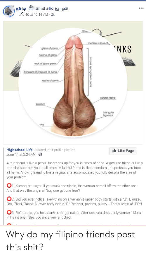 Penis am Your Penis