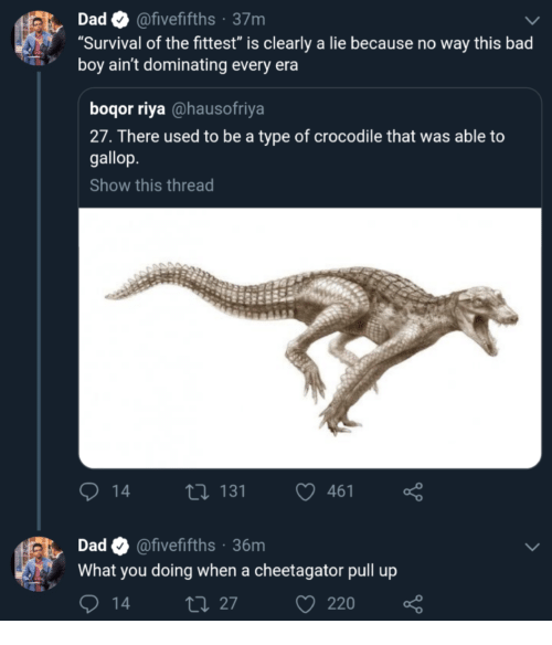 "Bad, Dad, and What You Doing: Dad@fivefifths 37m  ""Survival of the fittest"" is clearly a lie because no way this bad  boy ain't dominating every era  boqor riya @hausofriya  27. There used to be a type of crocodile that was able to  gallop  Show this thread  14  131  461  Dad@fivefifths 36m  What you doing when a cheetagator pull up  27  220"