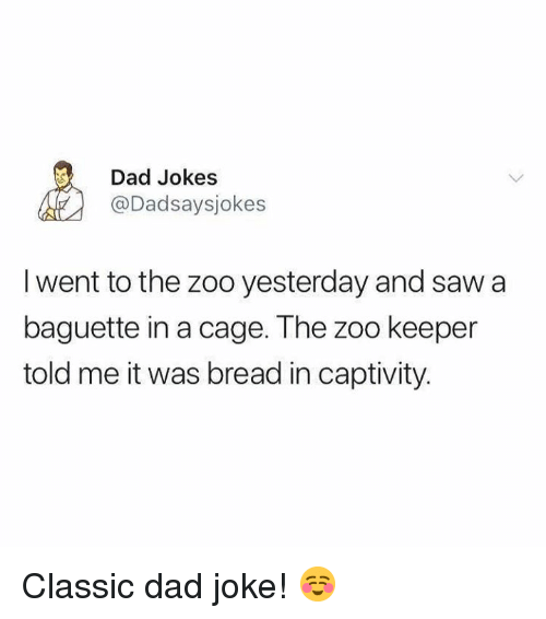 Dad, Memes, and Saw: Dad Jokes  @Dadsaysjokes  I went to the zoo yesterday and saw a  baguette in a cage. The zoo keeper  told me it was bread in captivity Classic dad joke! ☺️