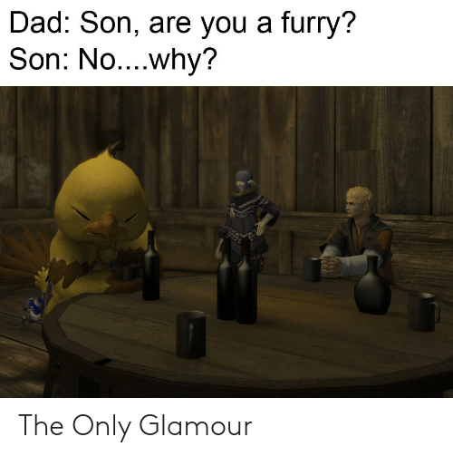 Dad, Dank Memes, and Furry: Dad: Son, are you a furry?  Son: No...why? The Only Glamour
