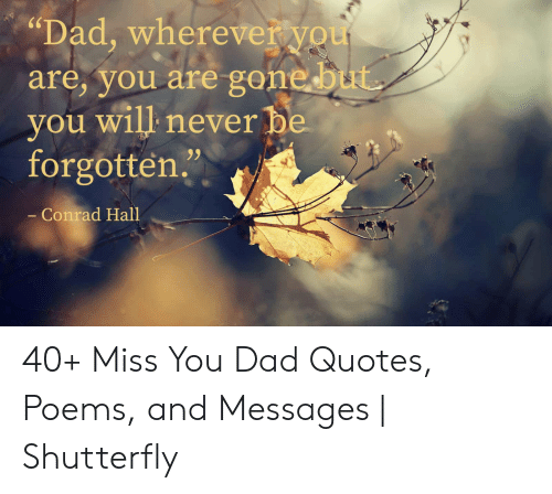 Miss You Dad Poems 1