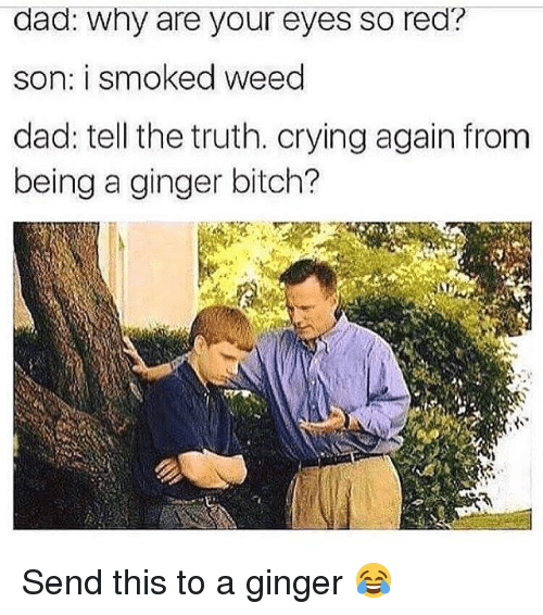 Bitch, Crying, and Dad: dad: why are your eyes so red?  son: i smoked weed  dad: tell the truth. crying again from  being a ginger bitch? Send this to a ginger 😂