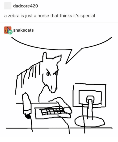 Horse, Zebra, and Just: dadcore420  a zebra is just a horse that thinks it's special  snakecats