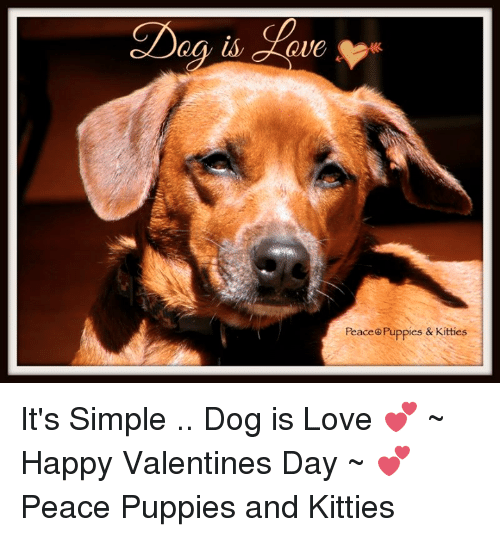 Dag Is Cleve Peace Puppies Kitties Its Simple Dog Is Love
