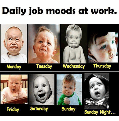 Funny Tuesday Work Meme : Daily job moods at work monday tuesday wednesday thursday
