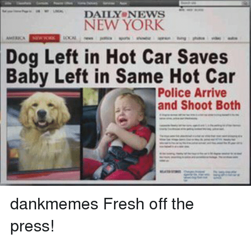 DAILY NEWS NEW YORK Dog Left In Hot Car Saves Baby Left In