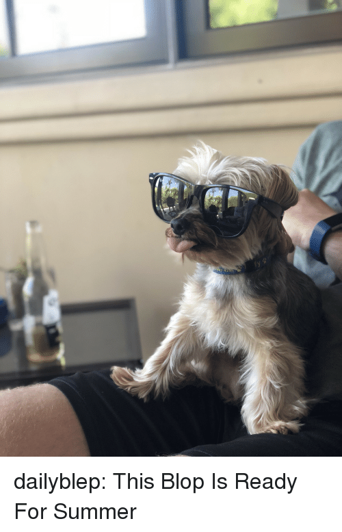 Tumblr, Summer, and Blog: dailyblep:  This Blop Is Ready For Summer