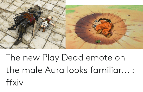DAIR the New Play Dead Emote on the Male Aura Looks Familiar Ffxiv