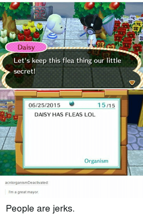 Lol, Flea, and Secret: Daisy  20  Let's keep this flea thing our little  secret!  06/25/2015  15/15  DAISY HAS FLEAS LOL  Organism  acnlorganismDeactivated  I'm a great mayor People are jerks.
