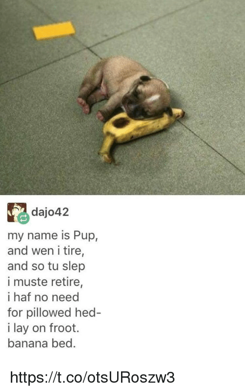 Memes, Banana, and Pup: dajo42  my name is Pup,  and wen i tire,  and so tu slep  i muste retire,  i haf no need  for pillowed hed  i lay on froot.  banana bed. https://t.co/otsURoszw3