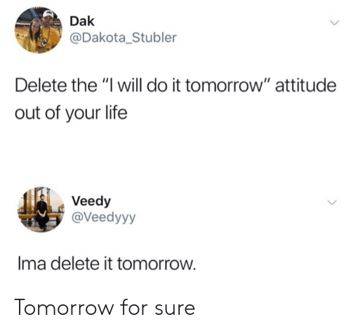 Dak Delete the I Will Do It Tomorrow Attitude Out of Your Life Veedy