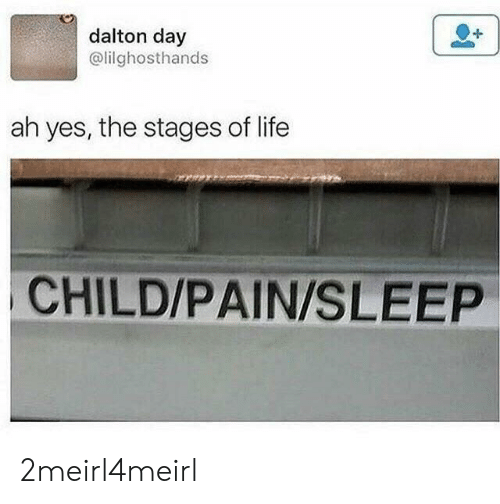 Life, Pain, and Sleep: dalton day  @lilghosthands  ah yes, the stages of life  CHILD/PAIN/SLEEP 2meirl4meirl
