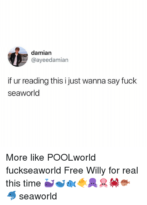 Memes, SeaWorld, and Free: damian  @ayeedamian  if ur reading this i just wanna say fuck  seaworld More like POOLworld fuckseaworld Free Willy for real this time 🐳🐋🐟🐠🐙🦑🦀🐡🐬 seaworld