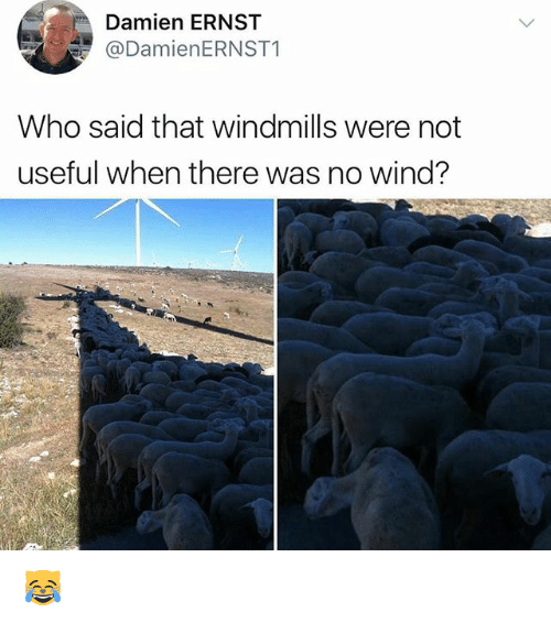 Memes, 🤖, and Who: Damien ERNST  DamienERNST1  Who said that windmills were not  useful when there was no wind? 😹
