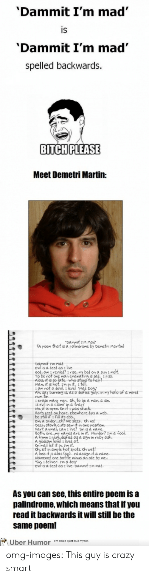Ash, Crazy, and Halo: 'Dammit I'm mad  IS  'Dammit I'm mad'  spelled backwards.  BITCH PLEASE  Meet Demetri Martin:  t rm mad  A poem that is a palindrome by Demetri martin  Dammit rm  is a deed as t live  ood, am i reviled? i rise, my bed on a Sun i me  man c  ing,is  Aasuit s of fe nito sten o hep  Mad Do9  t am not a  Ah, say burning is, as a deified gulp, in my halo of a mired  rum tin  i e  is evil in a clam? in a trap?  No.it is open. On it 1was stuc  Rats eed  be still if 1 fill its eblb  Ew, a spider.. eh? we sleep. oh no!  Deep, stark cuts sow it in one posit  Part animal, can i live? Sin is à name.  dips a  names are in it. Murder? rm a fool.  A hymn 11P  ed as a sign in ruby ash.  Gh st in aume l hot spots. oh wet!  Aloss it's alas (st), Pd assyit a na  Namenot one bottle minus an ode by  Sir, 1 deliver. Im 4 dog  As you can see, this entire poem is a  palindrome, which means that if you  read it backwards it will still be the  same poem!  Uber Humor I'm afraid just blue myself omg-images:  This guy is crazy smart