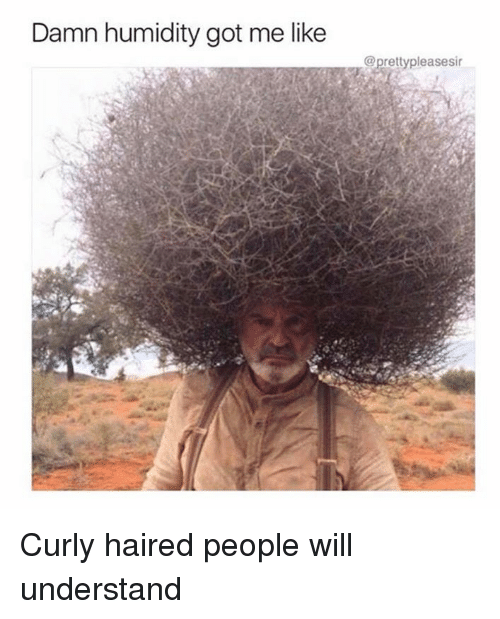 damn humidity got me like pretty pleasesir curly haired people 20514156 ✅ 25 best memes about humidity humidity memes